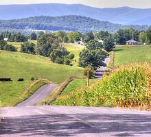 Hilly Country Road by James Brotherton