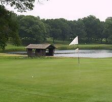 Covered Bridge on Golf Course by leoaloha