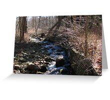 Bear Mountain Stream Greeting Card