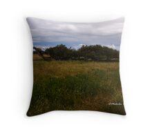 Leaning River Gums, Greenough, WA Throw Pillow