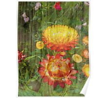 Flowers On Wood. Poster