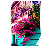 Light Blue Wall with Flowers Poster