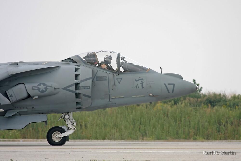 Harrier by Karl R. Martin