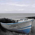 old blue and white boat by theresa knox