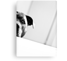 Can I help you?  Canvas Print