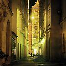 Alleyway - Vienna, Austria by Eric Cook