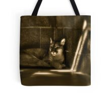 Another Melancholy Cat Tote Bag