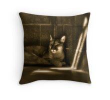 Another Melancholy Cat Throw Pillow