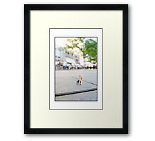 Protesters at The Democratic National Convention Framed Print