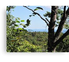 A little view!!! Oh yes!!!  Canvas Print