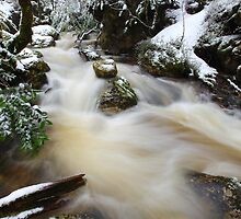 Winter at Crator Creek, Cradle Mountain National Park, Tasmania, Australia by Michael Boniwell