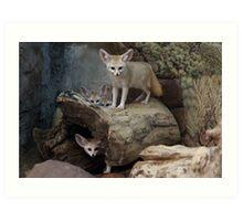 Awesome Fennec Fox Art Print