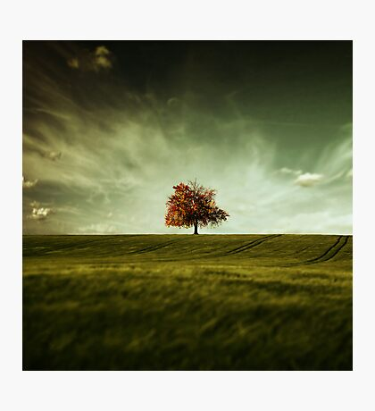 Crude Autumn Photographic Print