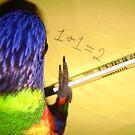 I Like Maths by Sarah Jennings