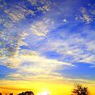 Good Morning! by Sheldon Pettit