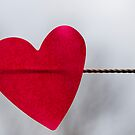 Heart On The Line by Cathi Norman