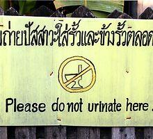 Chiang Mai, Bangkok by JonathaninBali