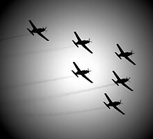 Roulettes by Paige