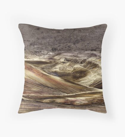On the surface of Mars Throw Pillow