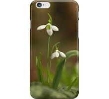 The lonely snowdrop iPhone Case/Skin