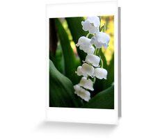 Flowers (1) Greeting Card
