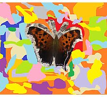 Butterfly Abstraction Photographic Print