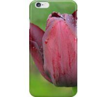 raindrops on tulips iPhone Case/Skin