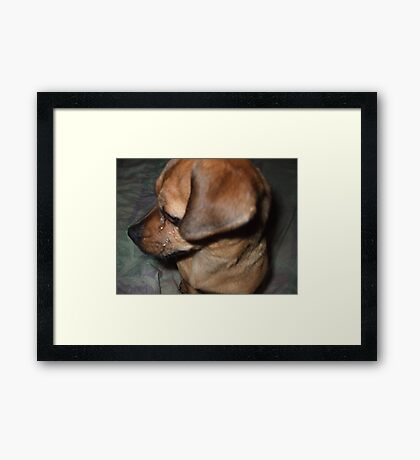 Sad Sack Framed Print
