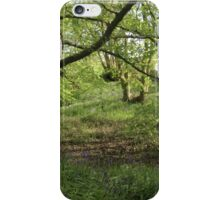 The beauty of woodland iPhone Case/Skin