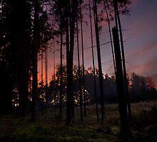 SKY FIRE 3 by Antanas