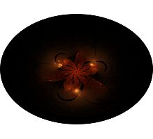 Fractal Flower Photographic Print