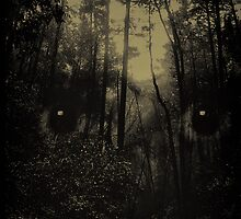 Forrest of Bad Dreams (Tint) by redeye1977