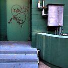 The Green Door by Marc Sullivan