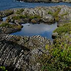 The Extremes of the Southern Headland Trail in Pukaskwa National Park by loralea