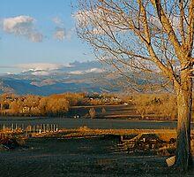 Farm Life In Colorado by Pamela Hubbard