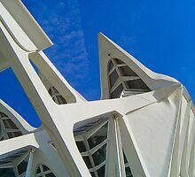 City of Arts and Sciences of Valencia, Spain by jmhdezhdez