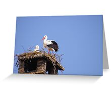 Stork and his baby Greeting Card