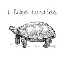 I Like Turtles by anabellstar
