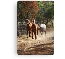 Charging Home Canvas Print