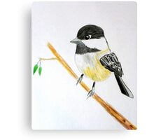 Bird  Canvas Print