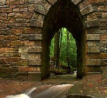 poinsett bridge by J.K. York