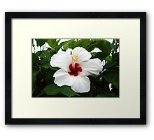 BLOOD AND PURITY Framed Print