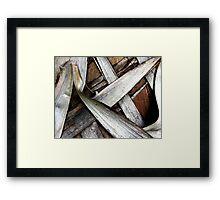Palm Bark Series 1 Framed Print
