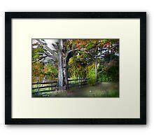 """ Tree "" Framed Print"