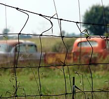 Cars And Trucks Rusting Away by angelandspot