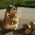NUTTY BUDDY by Lori Deiter