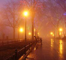 Odessa - In The Mist - Alley by Nina Zhiltsova