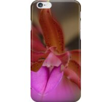 'picture perfect' Orchid 1 iPhone Case/Skin