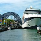 Cruising the Harbour by Lisa Williams