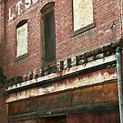 The Old Chinese Herb Store by Buckwhite